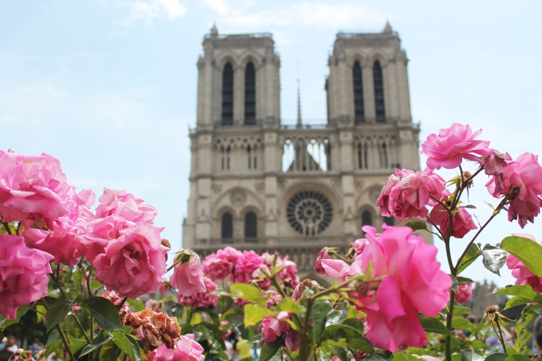 Notre Dame spring