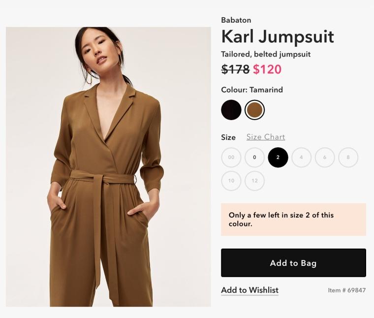 Aritzia jumpsuit